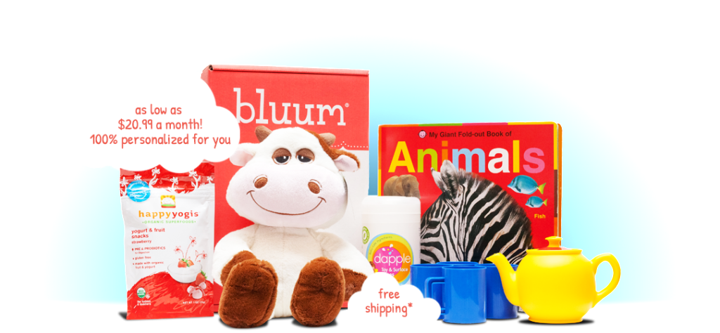 bluum_monthly_subscription_box_review
