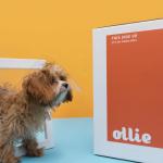 My Ollie